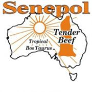 Australian Senepol Cattle Breeders Association Inc.