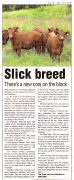 Slick Breed -